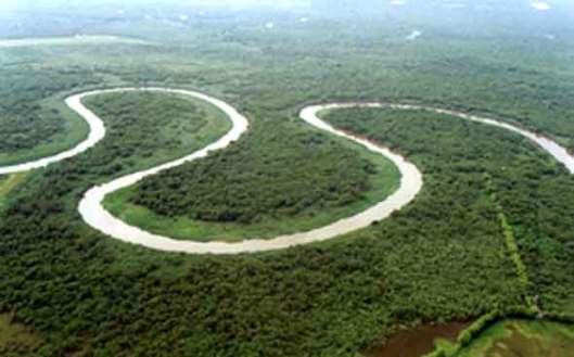 Vista aérea da APA de Guapimirim antes da instalção do complexo (foto de Luciana Carneiro)